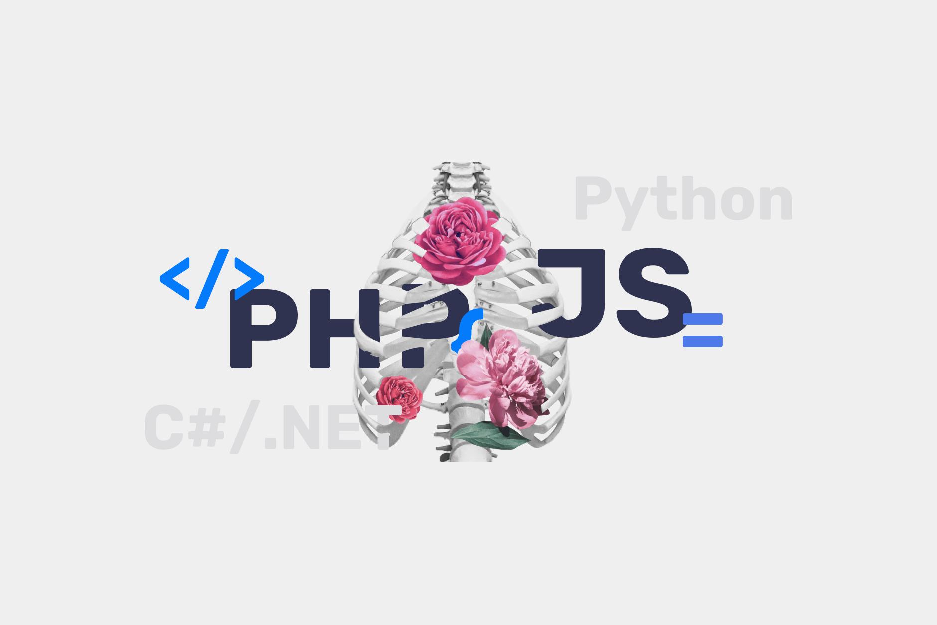 The Anatomy of a Ukrainian Software Engineer