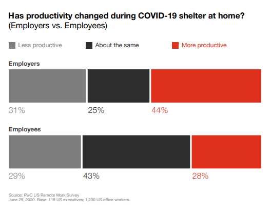 PwC Survey Return to Work After Covid-19 Productivity