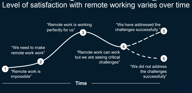 Remote work satisfaction over time Mckinsey Report